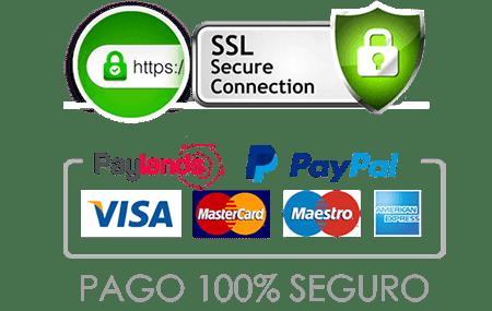Pago Seguro con tarjeta de credito debito Paynopain nuevo PAYPAL